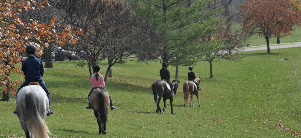 horsebackriding-stlouis3